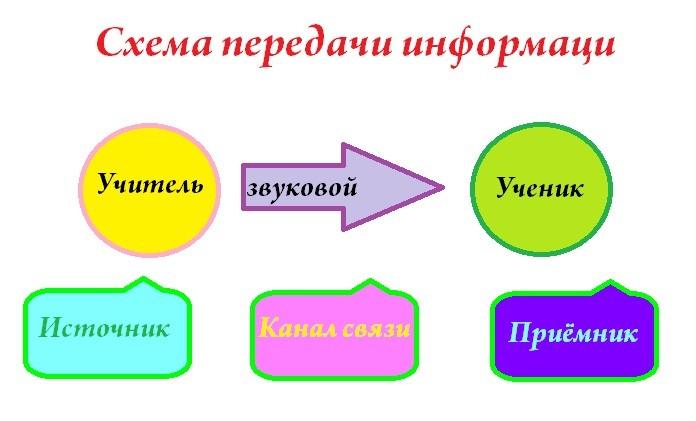 автор: Шошина Вероника