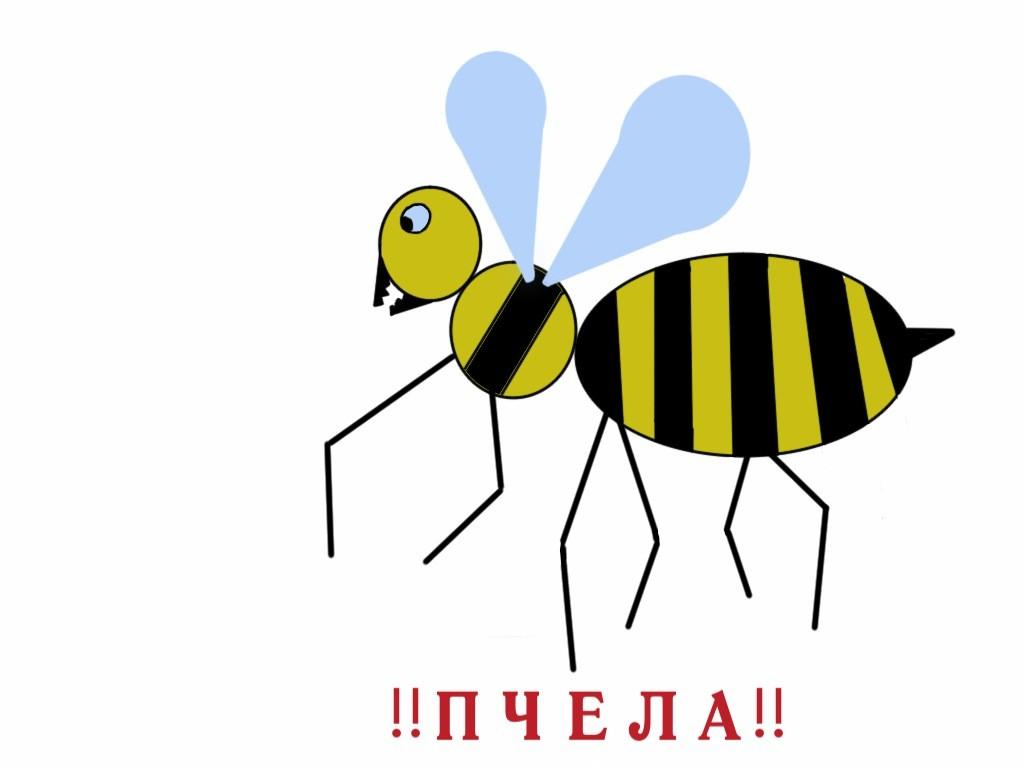 автор:Алисов Никита