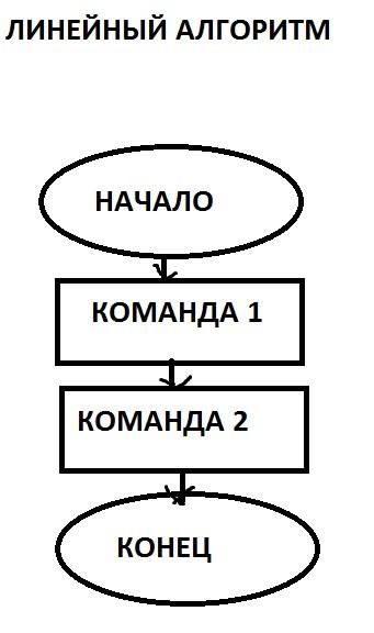 автор: Кольцов Даниил