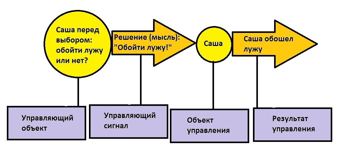 автор: Фаянцева Севтлана