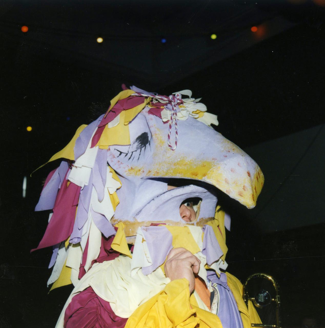1984 Paradisvögu