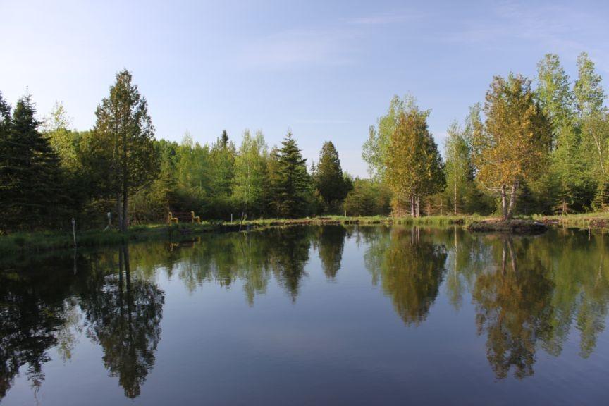 Activités de plein air / Location de chalet et yourte