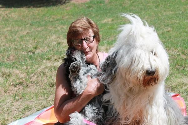 Schapendoeshündin Viva Gulietta in ihrer Familie