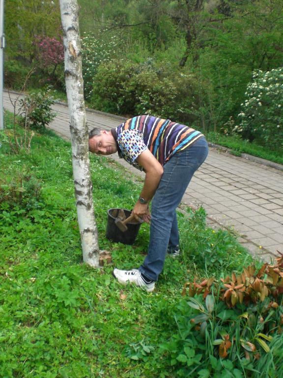 Frank macht den Baum fest