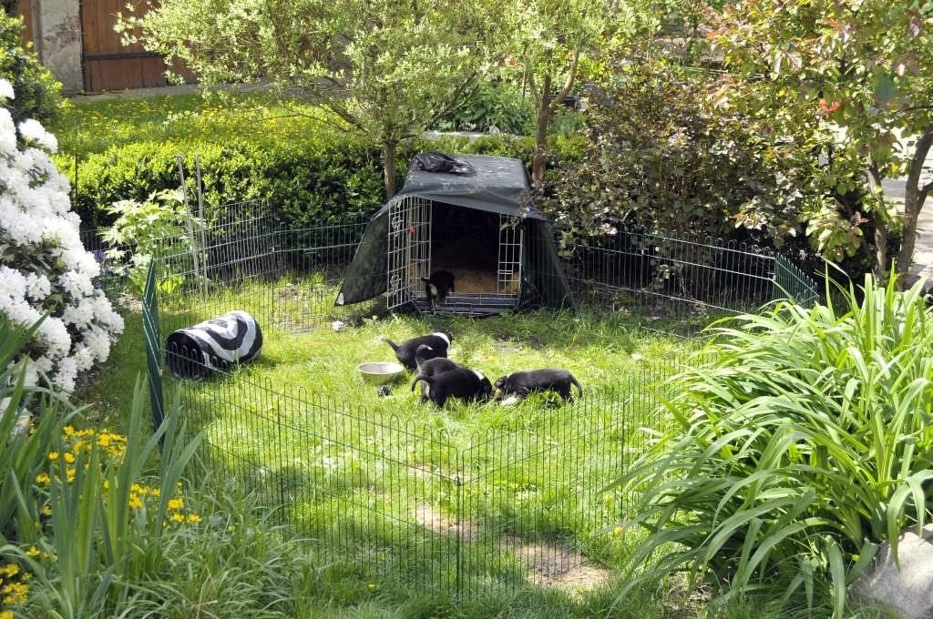 Der Gartenauslauf