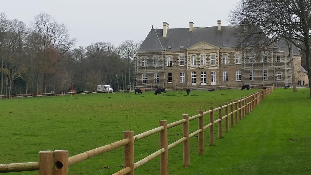 Espace spectacle des chevaux Frisons et Tournoi de Chevalerie