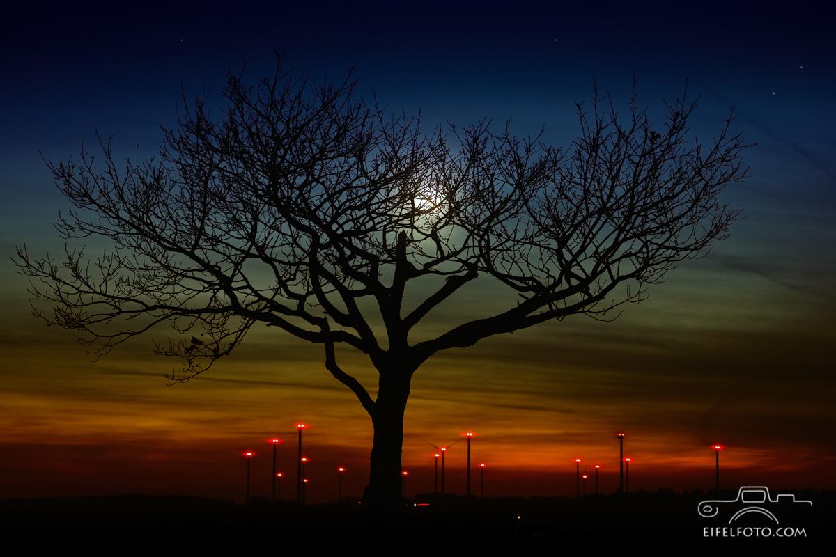 Abends am Windpark Schleiden auf den Dreiborner Höhen
