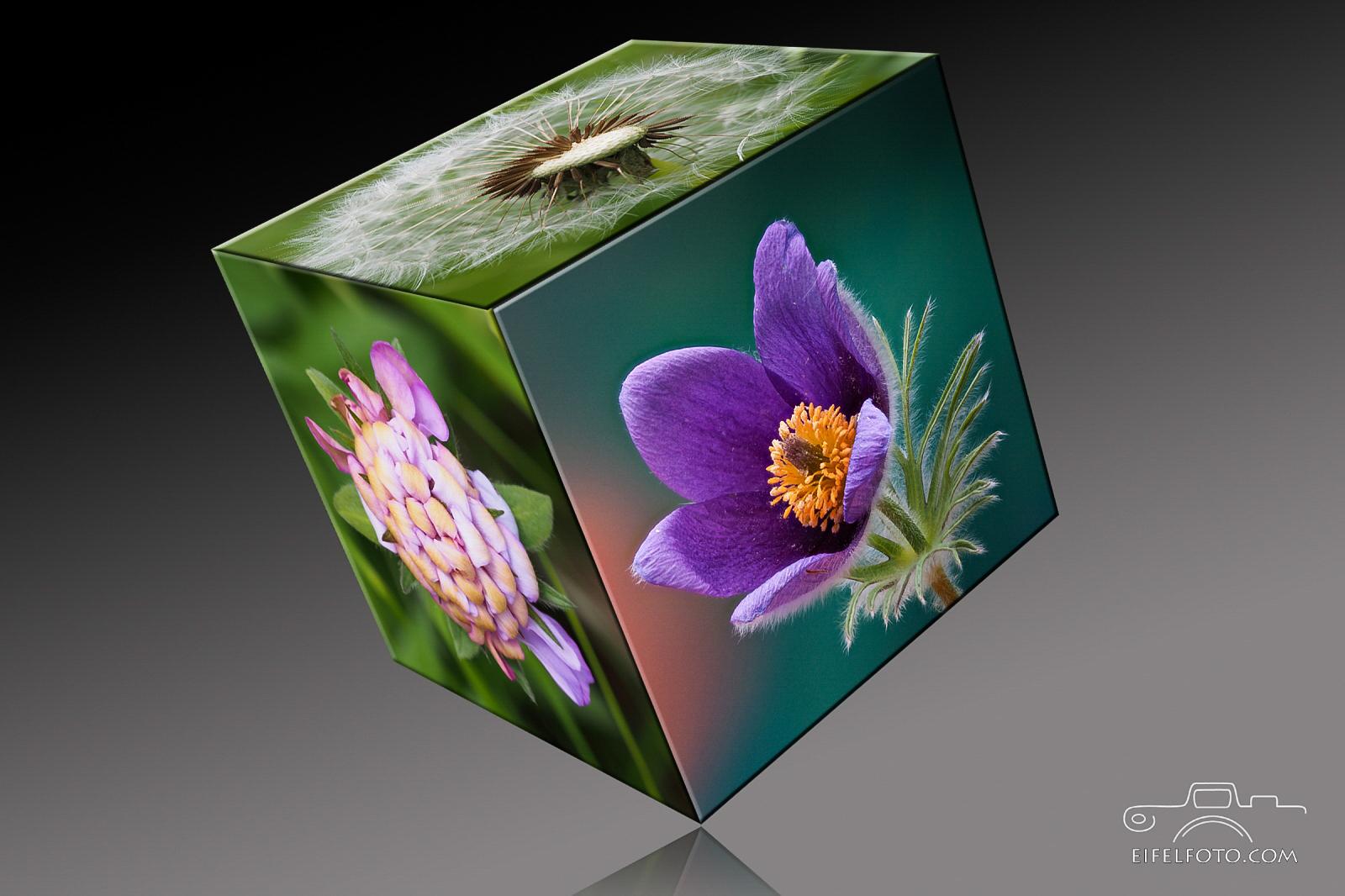 flower cubes