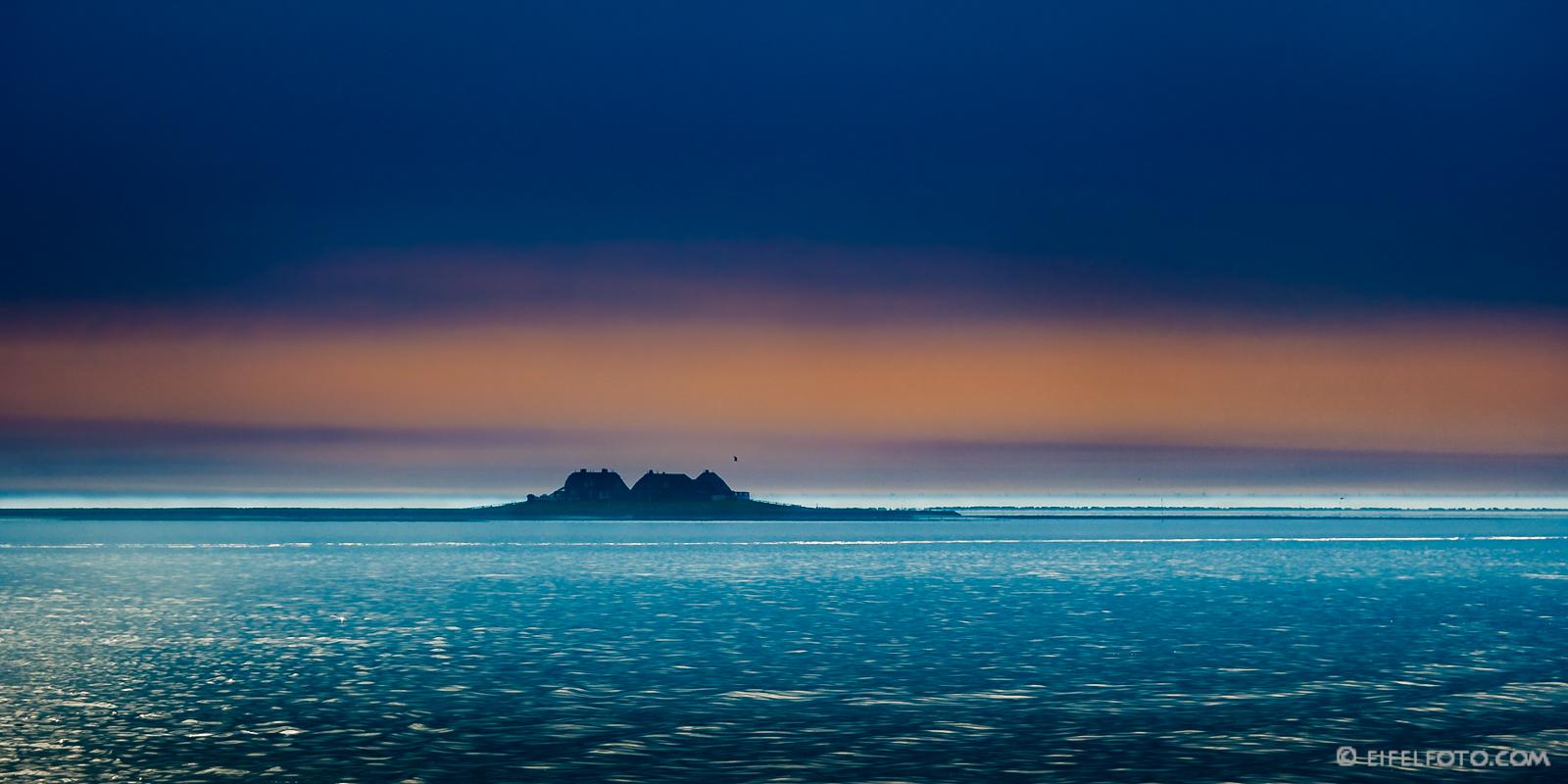 Blaue Stunde im Nationalpark Wattenmeer - Westerwarft auf der Hallig Hooge