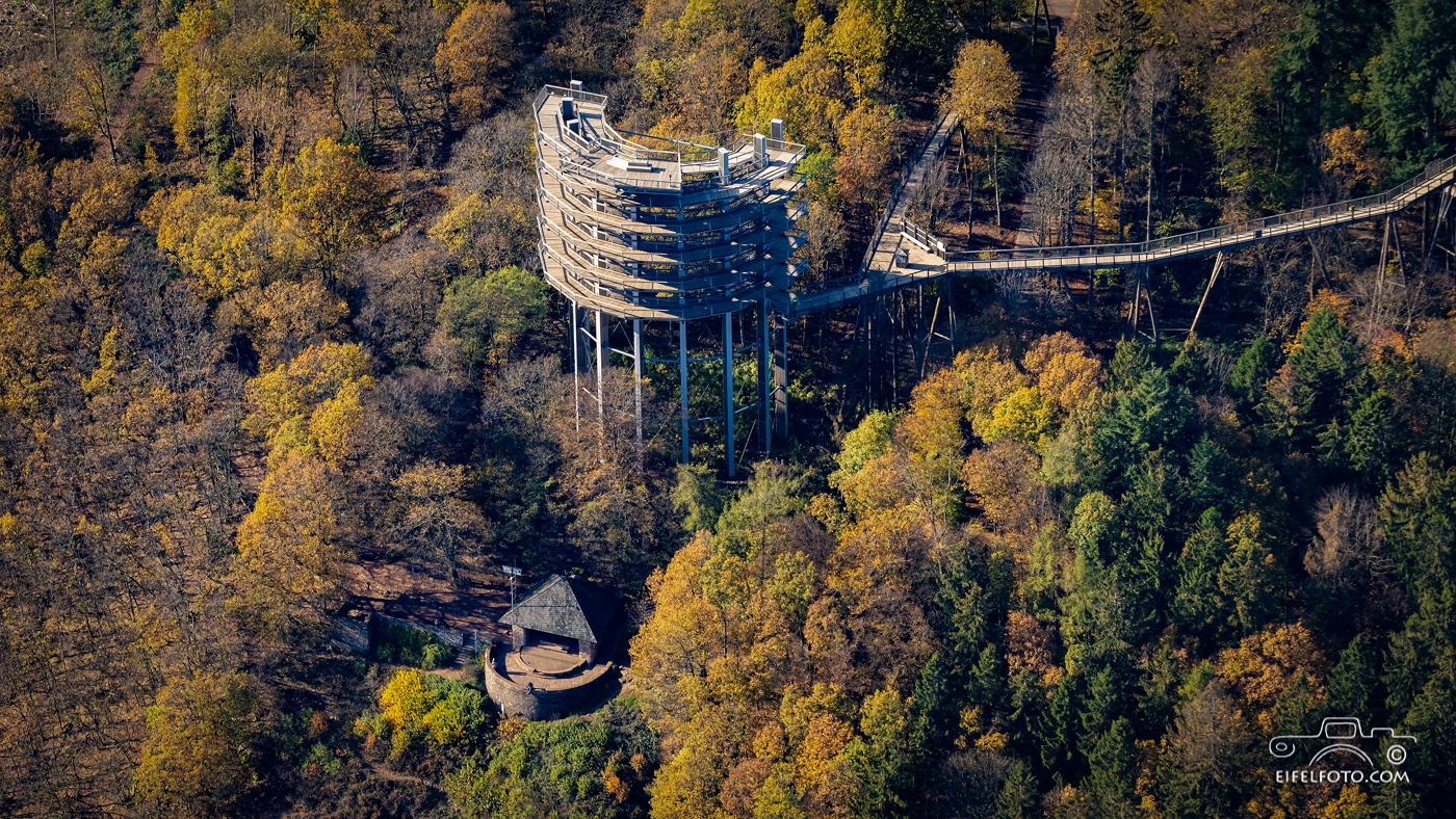 Der Aussichtsturm des Baumwipfelpfads und der Aussichtspunkt Cloef