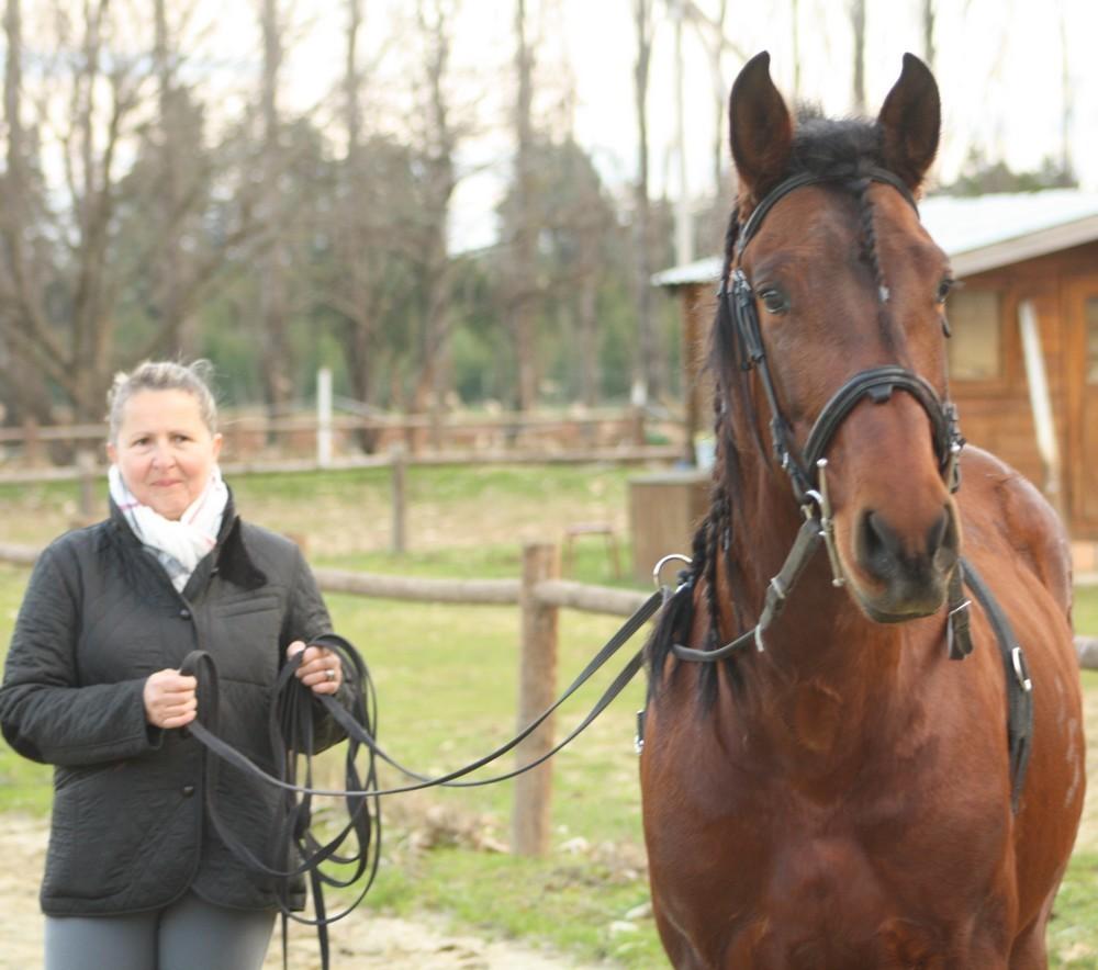 Lidie et sa 1 ère séance de longues rênes