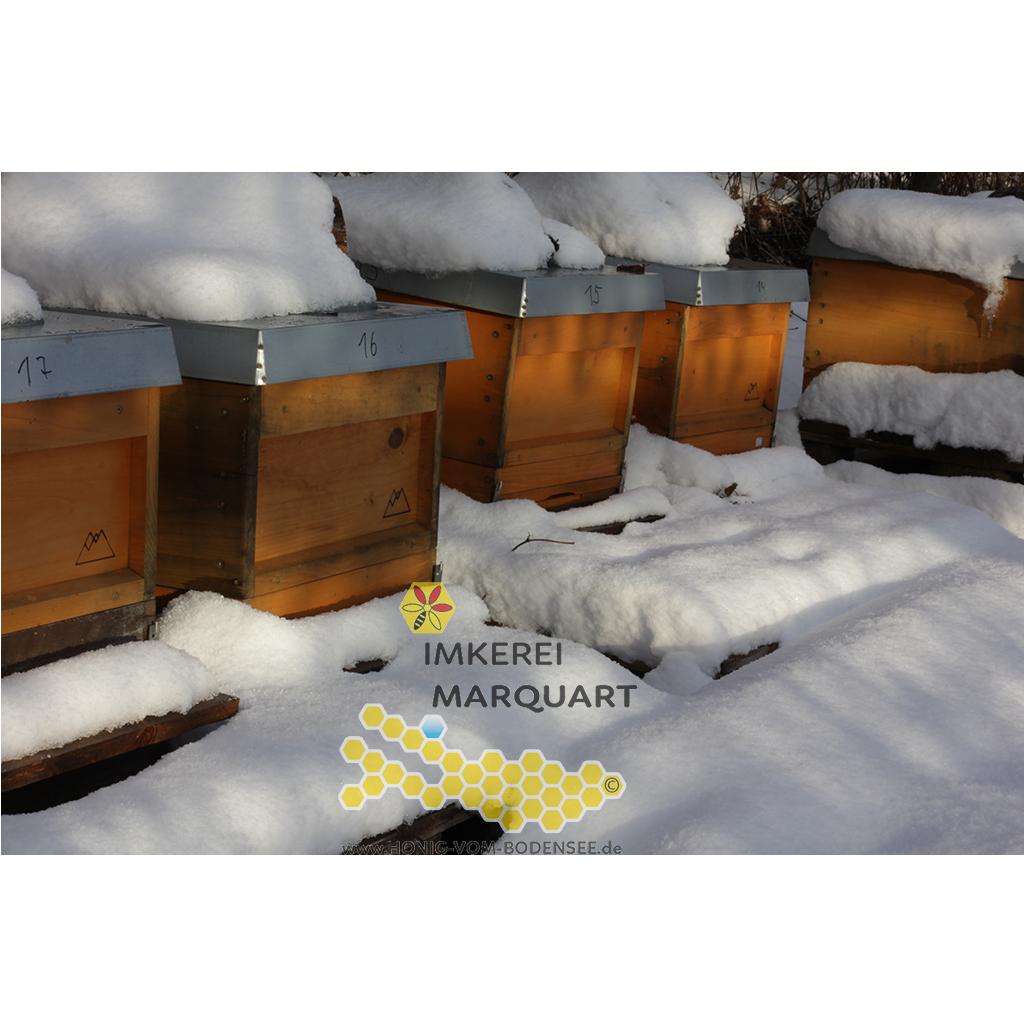 Bienenbeuten im Winter