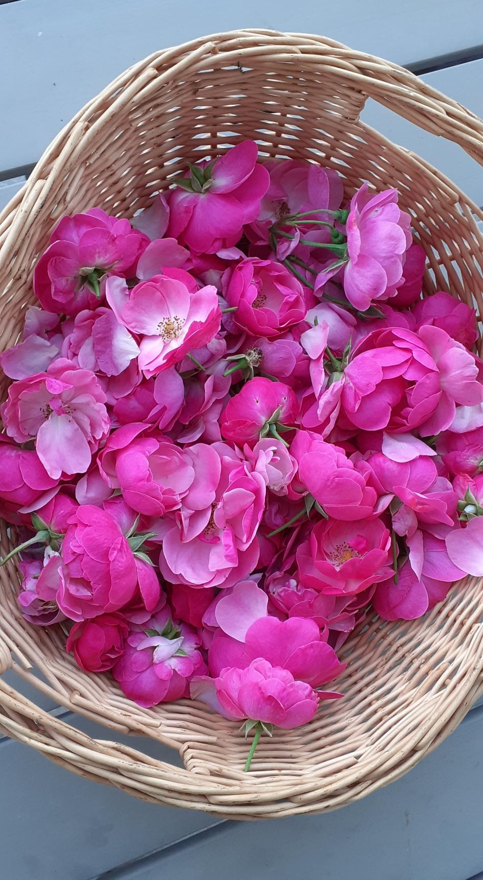 Gut gemocht Rosenwasser mit Rose - Häkelliebe by bine ZI13