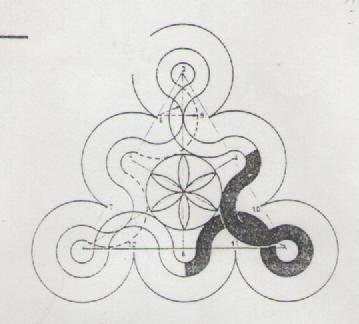 EJERCICIO 12