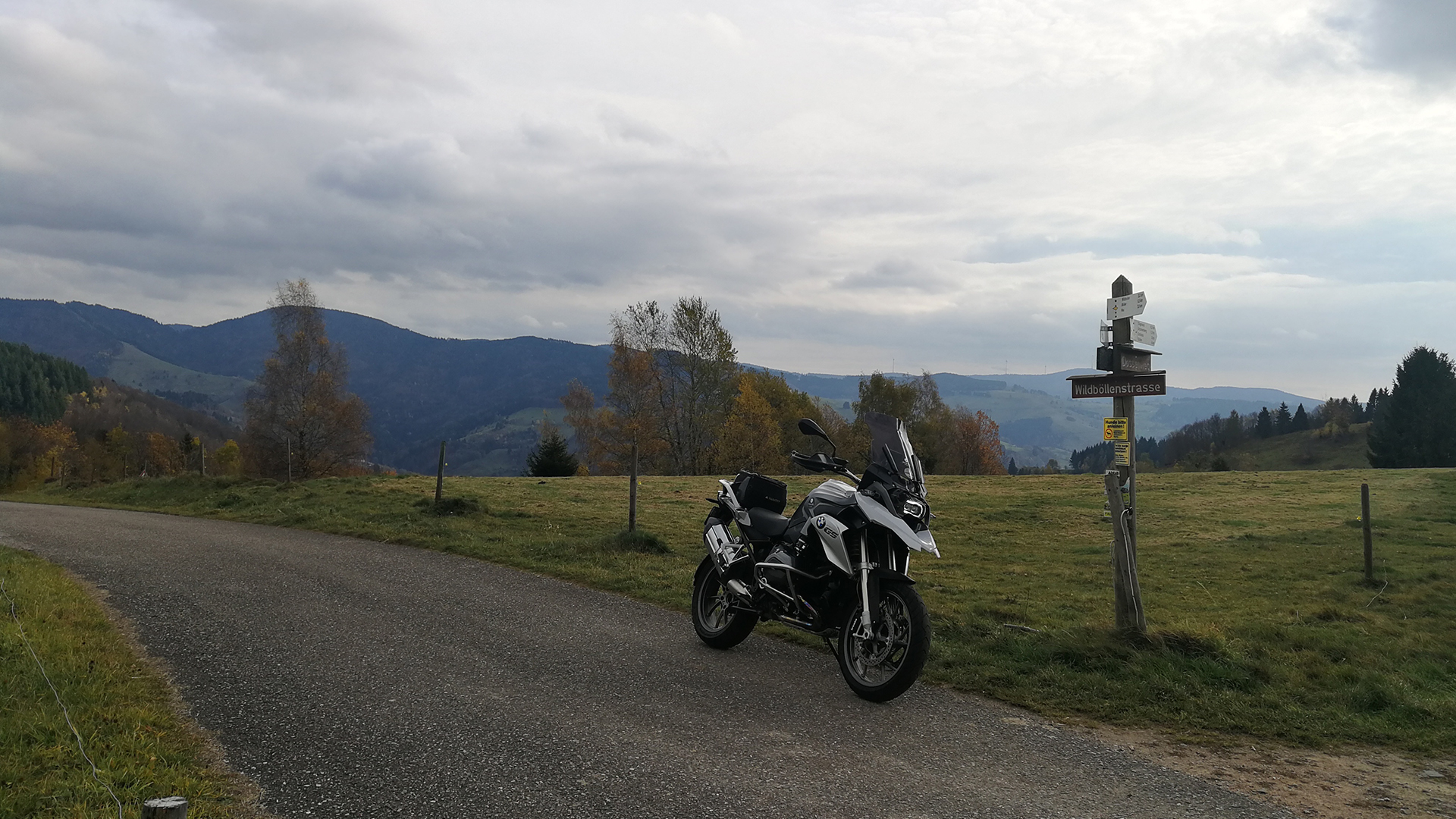 0824 - D - Wildböllen-Höhe