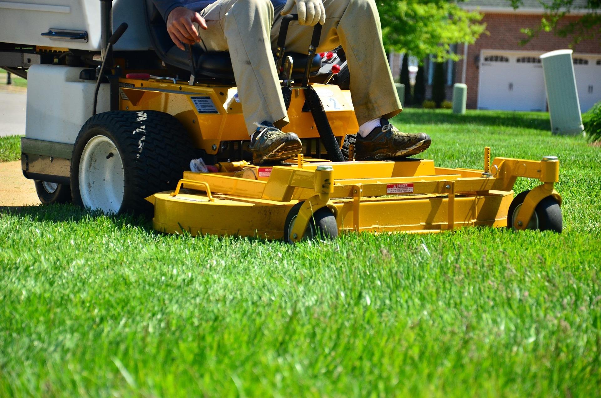 ZEOLITE CHABASITE GRASS CARPETS - BIOLOGICAL