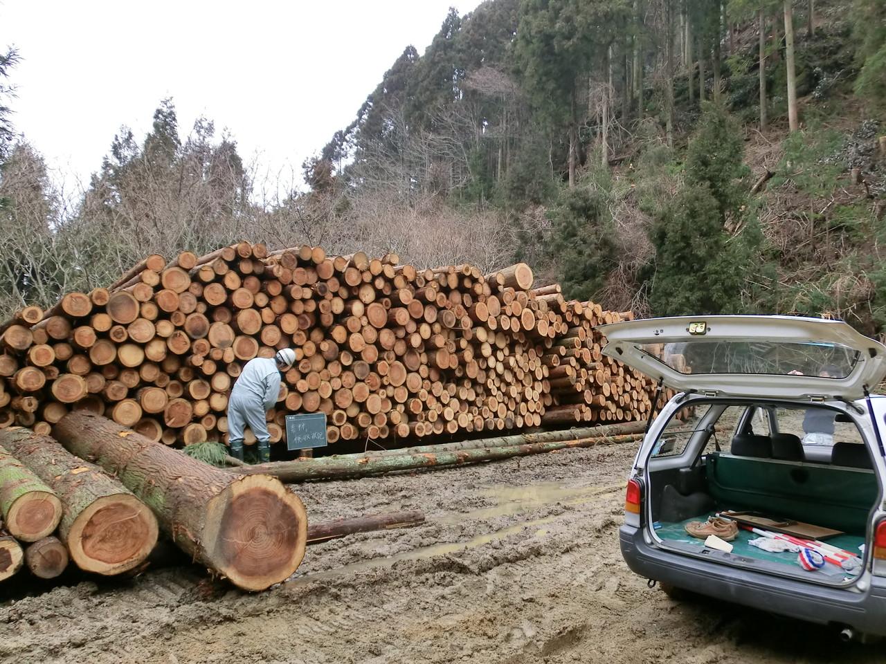 林業・木材利用に関係する地域の現状や取り組みの視察調査  (北条高縄山)