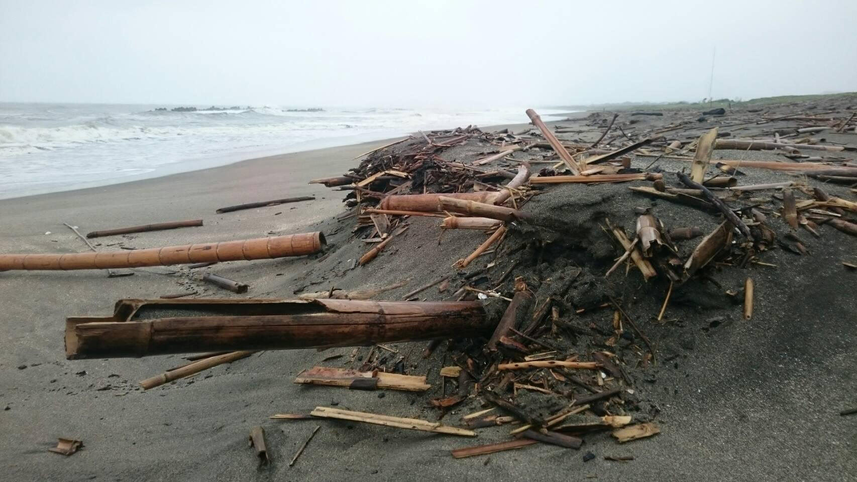 強風のため3日に延期です!海岸の流竹を竹炭へ!!海岸で竹炭プロジェクトが始まります!!