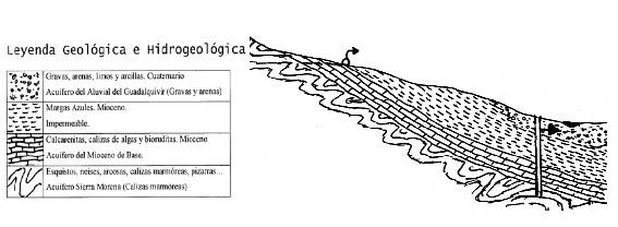 Corte geológico ilustrativo de las afecciones al acuífero Mioceno de Base por drenaje hacia el acuífero Aluvial del Guadalquivir.