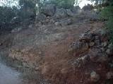 Formación Topreárboles