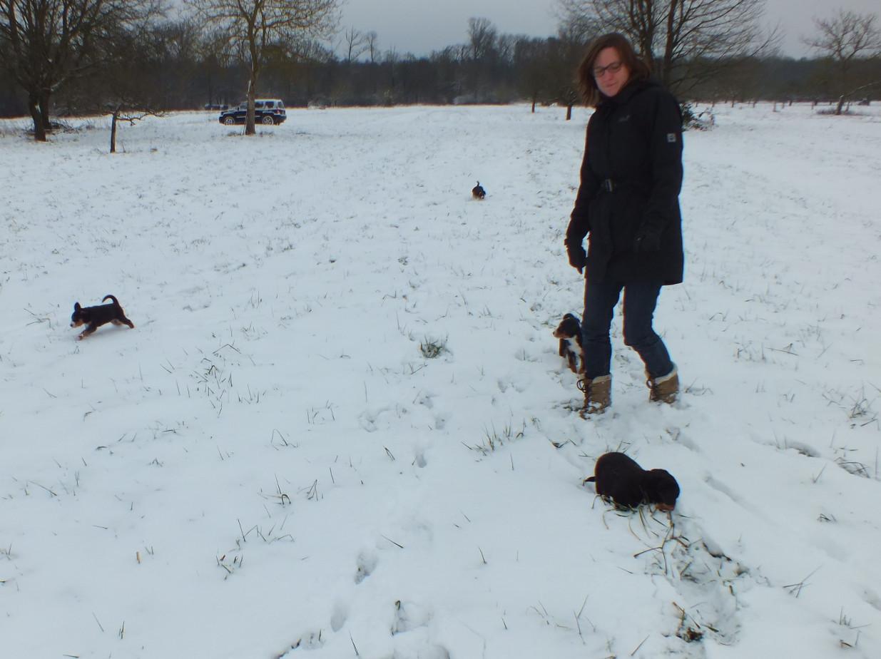 Appenzeller im Schnee