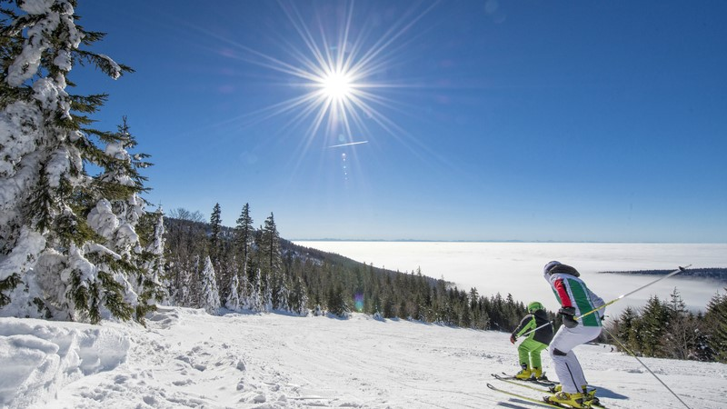 Erwachsener und Kind beim Skilaufen abwärts mit Nebelmeer im Hintergrund