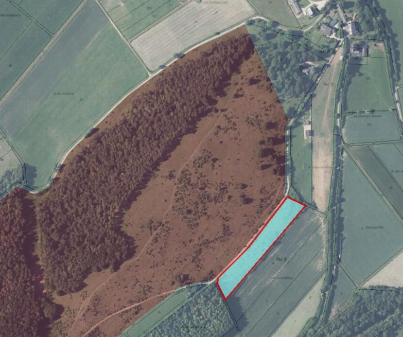 Die NABU-Fläche liegt am Ostrand des Naturschutzgebietes Hönselberg