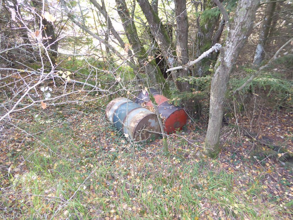 Müll und Ablagerungen auf dem Grundstück, die wir entsorgen