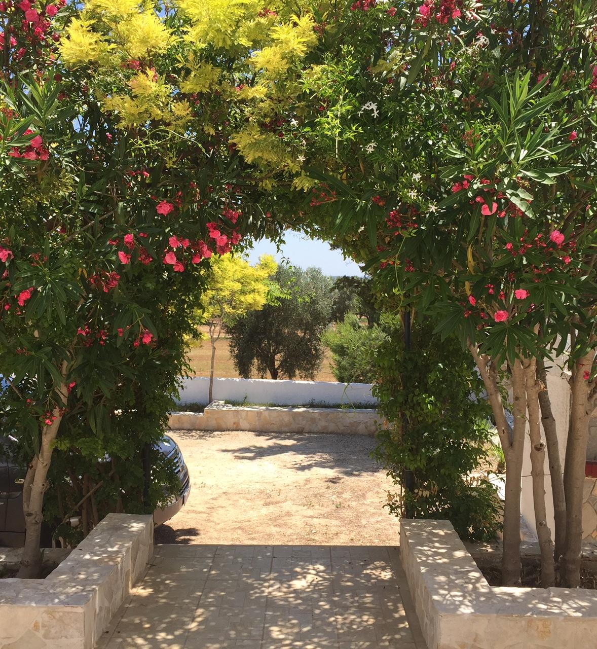 Lecce 6 - Terrazza e vista sul giardino