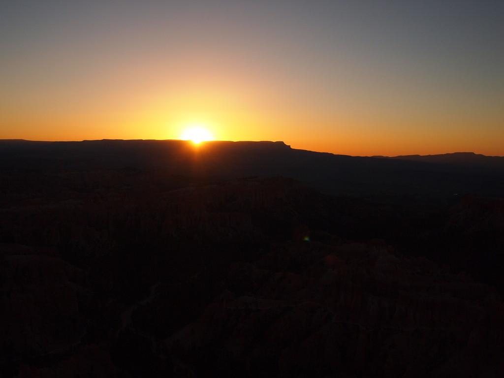 Der frühe Vogel sieht den Sonnenaufgang