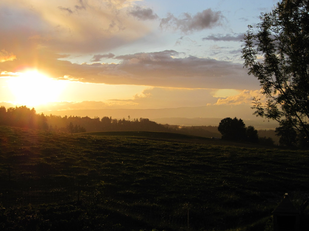 Sonnenuntergang auf der Oschwand