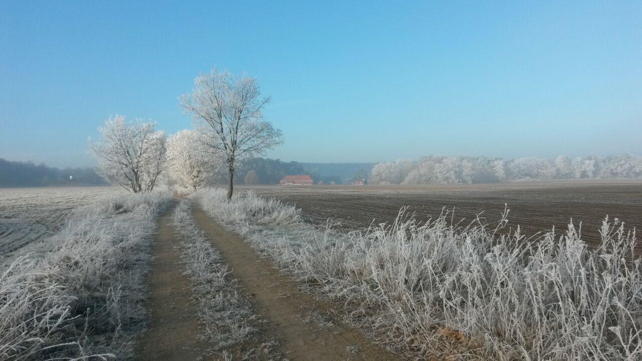 Auch im Winter ein Naturerlebnis...