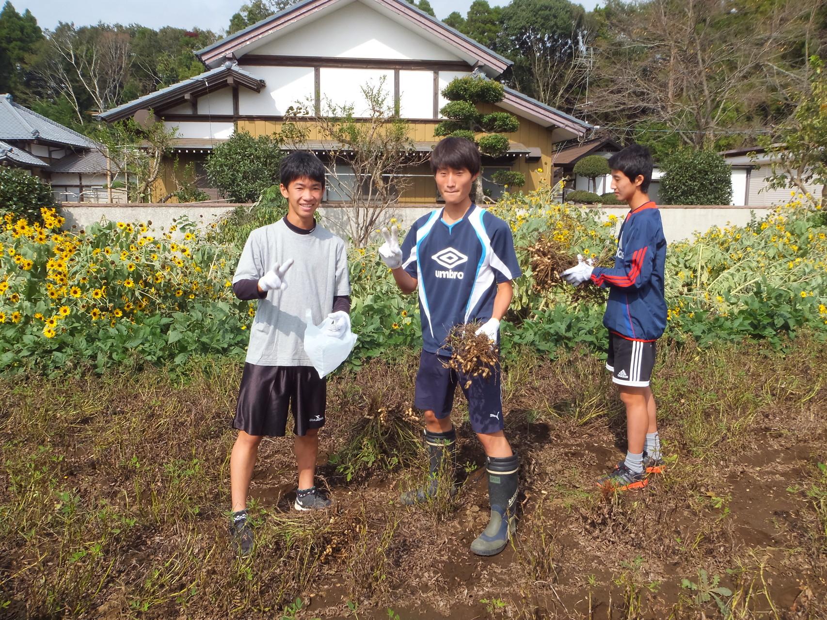 2014.10.11 ピーナッツフェスタ (畑サッカー)