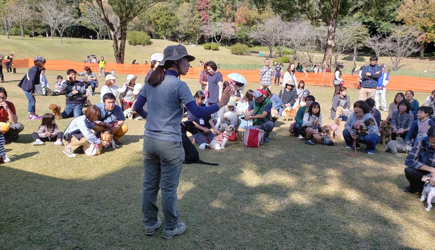 鹿児島市動物愛護フェスティバルしつけ教室体験
