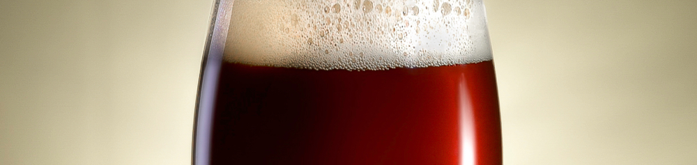 Vista in sezione di un calice di birra artigianale appena spillata all'Ombelico Rivoli Torino