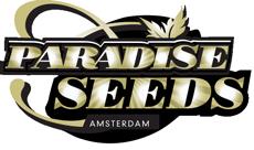 Paradise Seeds, Samen