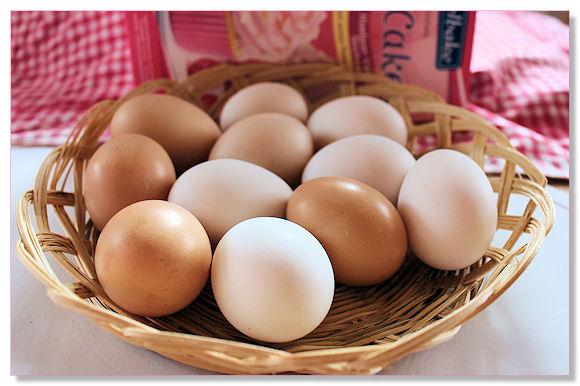 Im Sommer ertrinken wir fast im Eiersegen ... im Winter sind die Eier rar und ein wahrer Segen