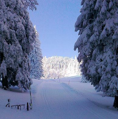 Die verschneite Juralandschaft an einem Wintermorgen