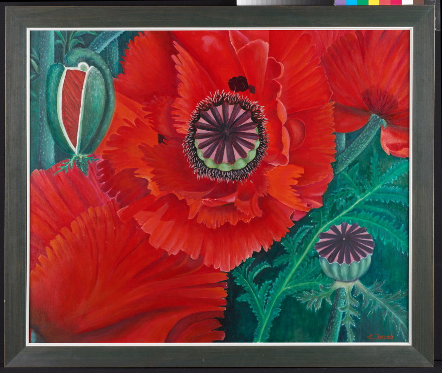 Poppy Flowers 66 x 79 cm Oil on Board 1997