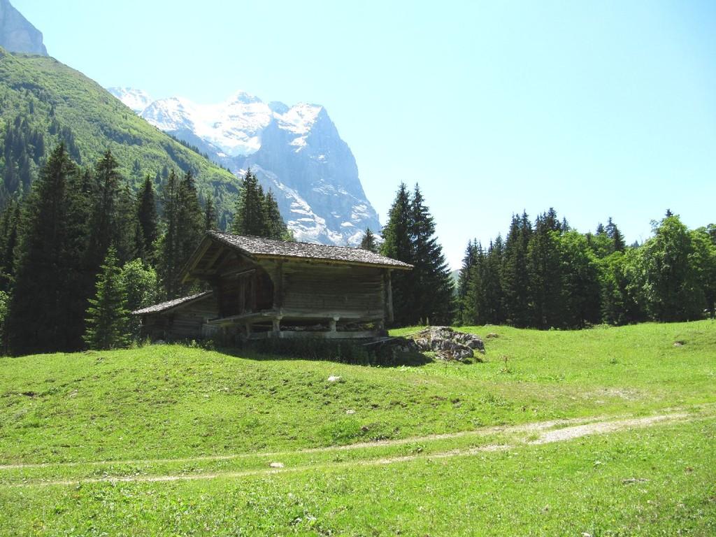 Alphütte auf Boch mit dem Wetterhorn im Hintergrund