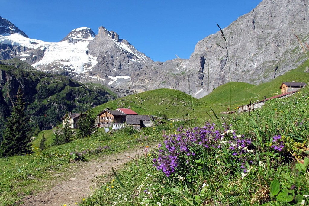 Alp Obersteinberg