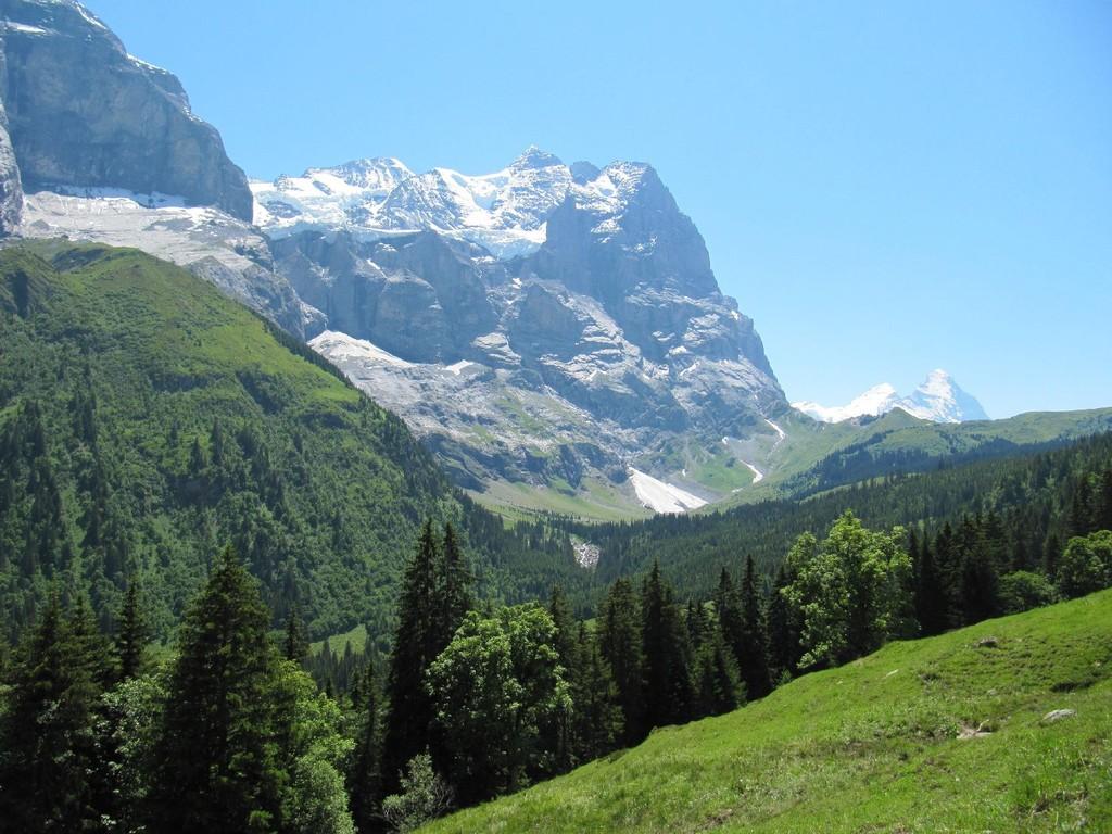 Aussicht mit Wetterhorn und Eiger