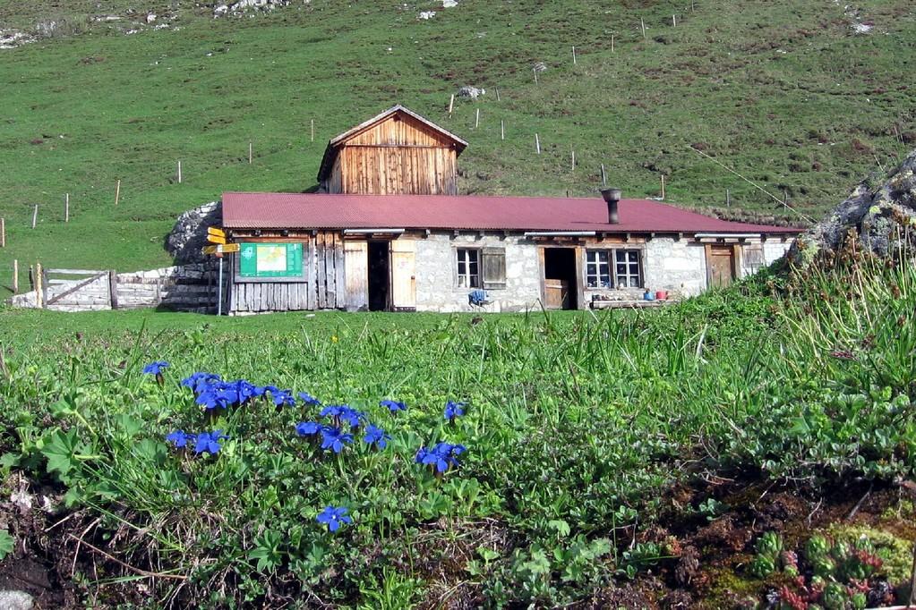 Alphütte und Stall