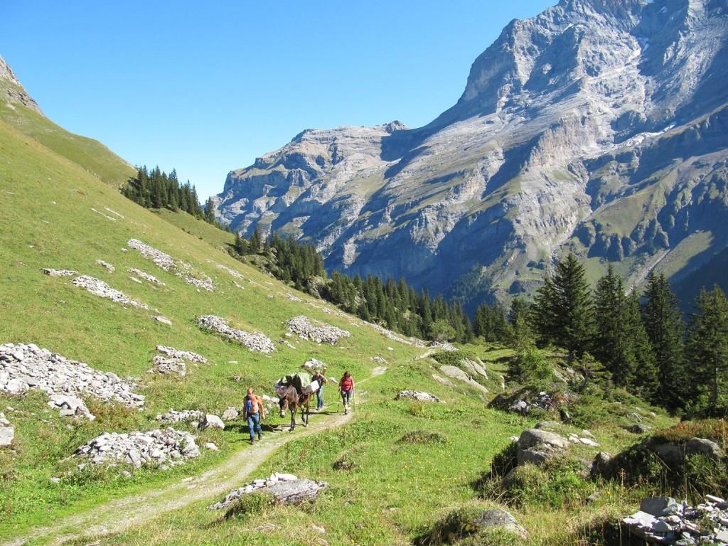 Ankunft auf Alp Obersteinberg