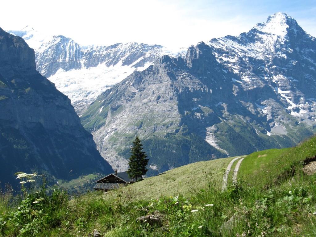Blick Richtung Eiger