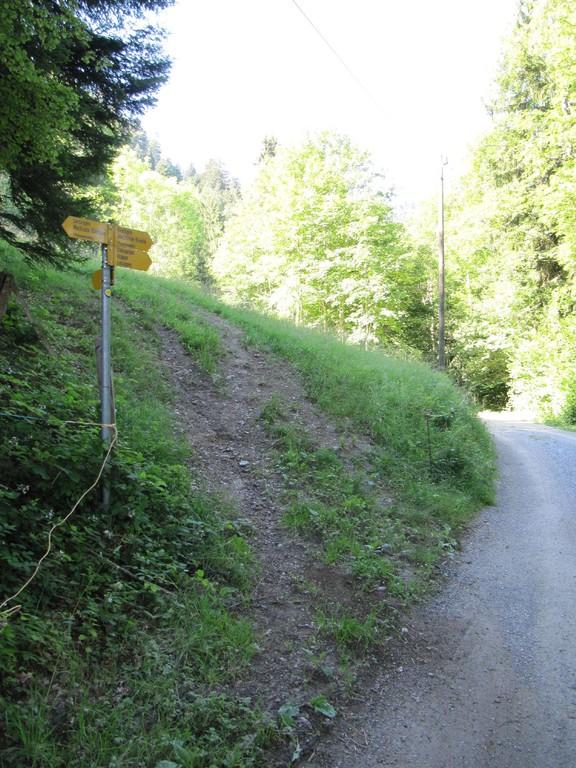 """Eingang"" zur Cholgruebe/Stoffelberg"