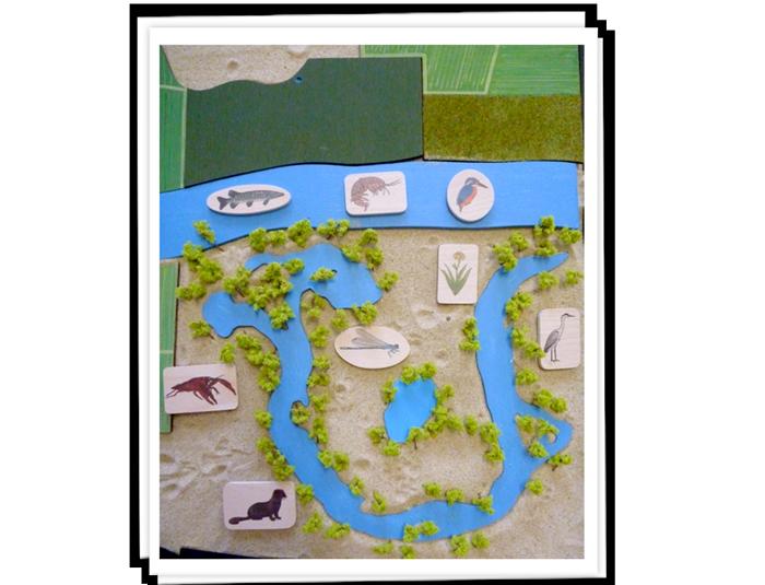 Milieux naturels, végétation symbolique, pions faune/flore.