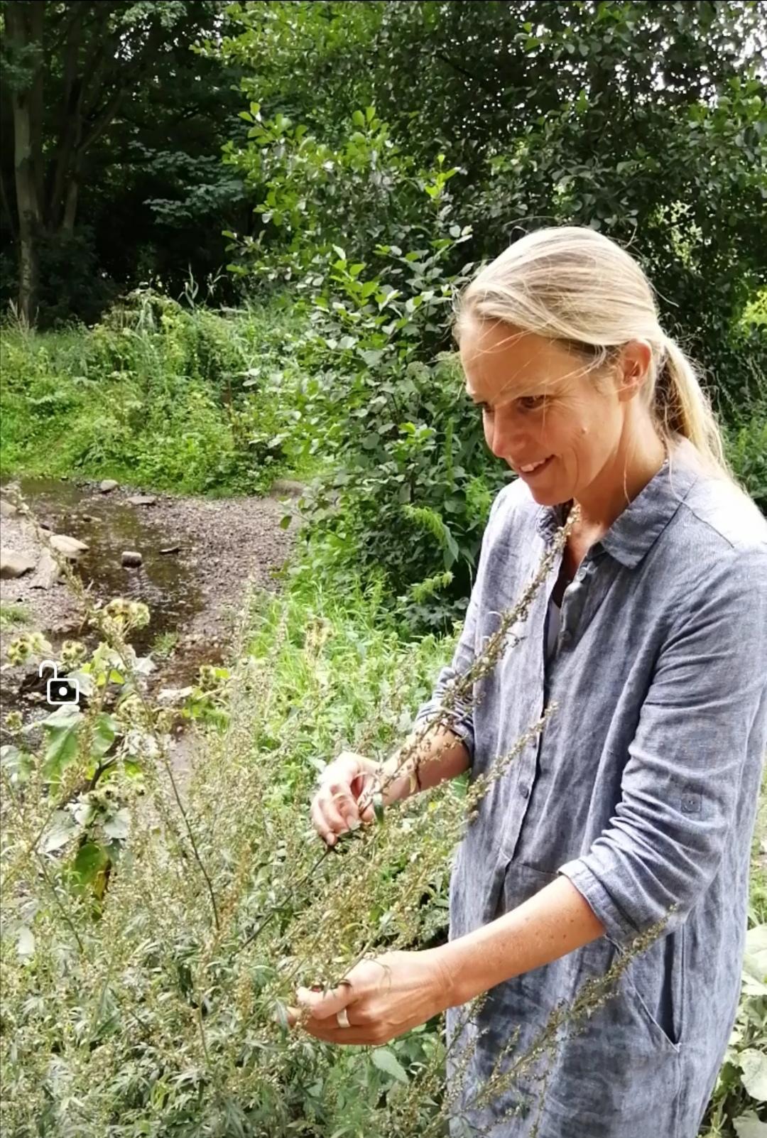 Daniela Wolff mit dem Beifuß