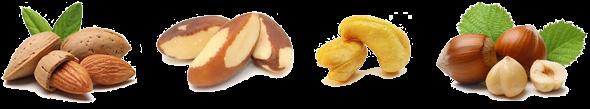 Fruits à coque pour perroquets