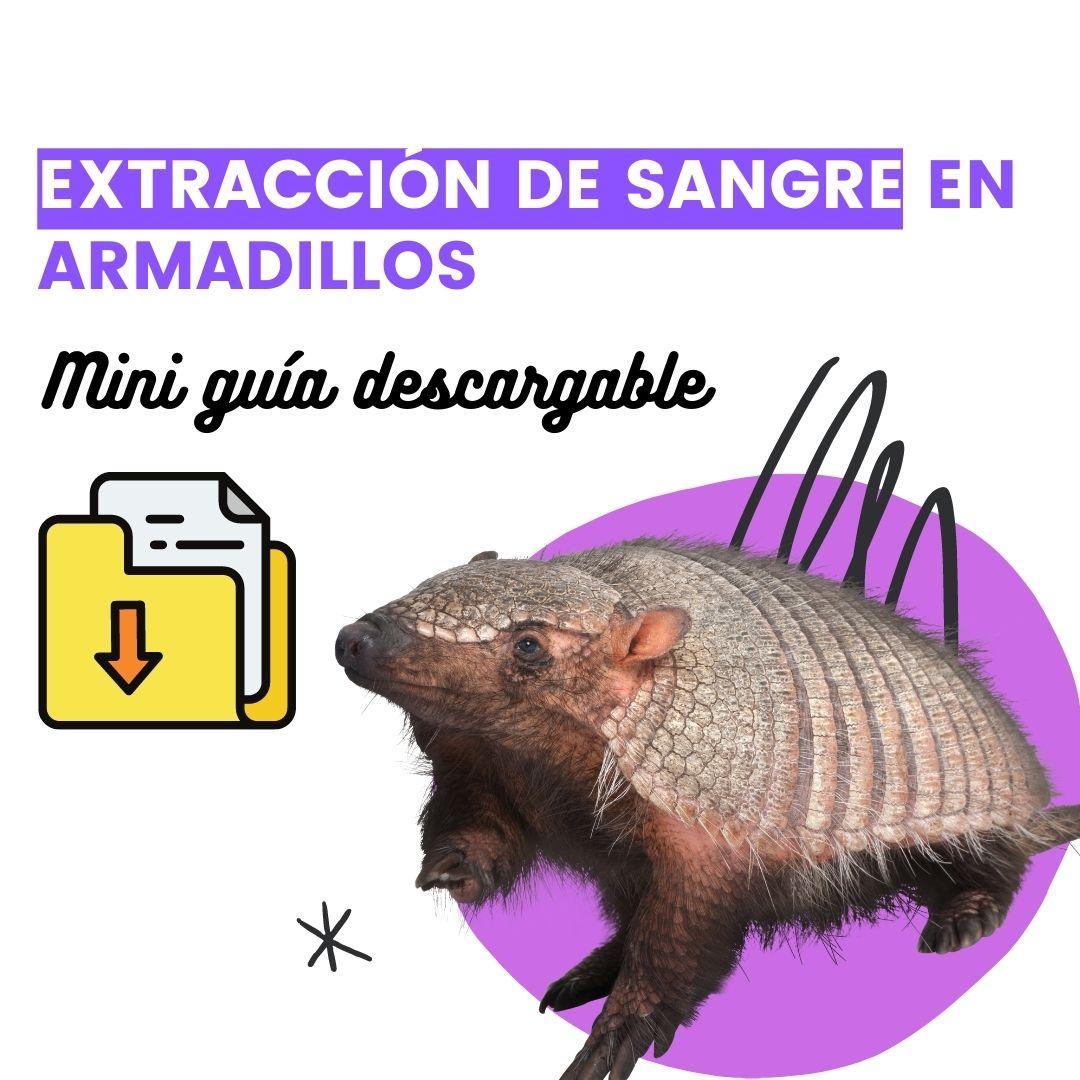 MINI MANUAL DE EXTRACCIÓN DE SANGRE EN ARMADILLOS